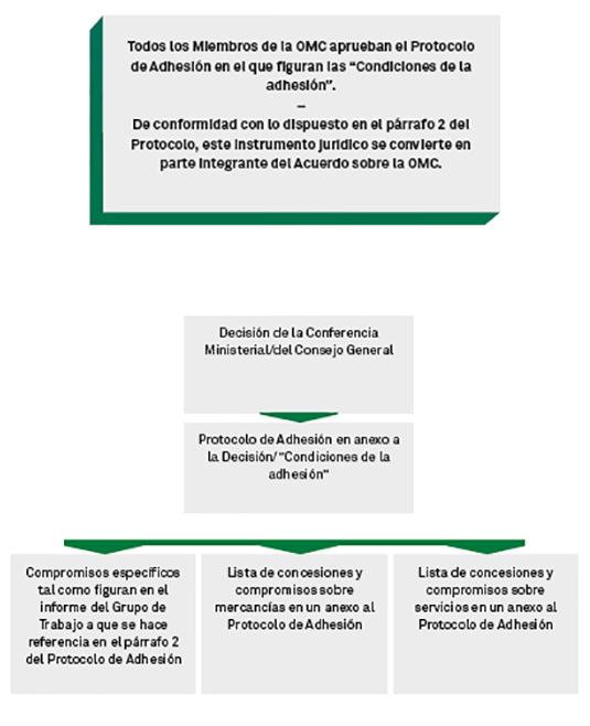 Omc Adhesións Estructura Del Conjunto De Documentos De