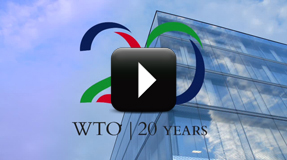 term paper on wto
