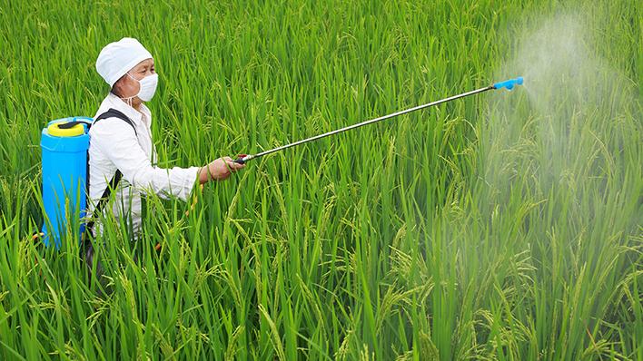 Contaminacion agricola fitosanitarios