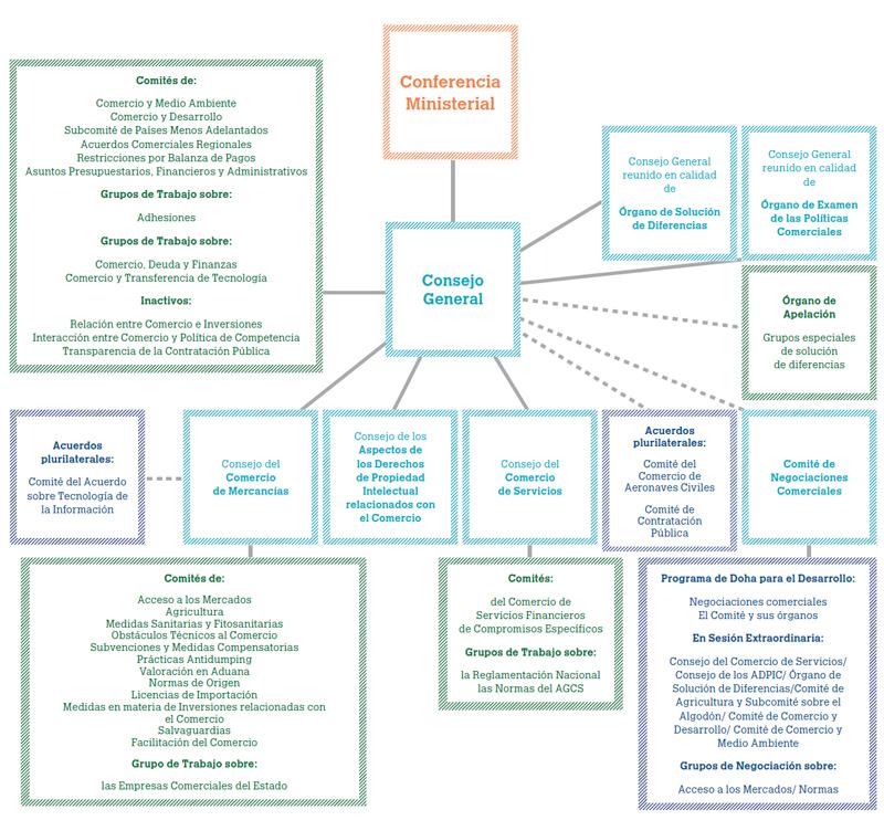 La Omc Entender La Omc Estructura De La Omc